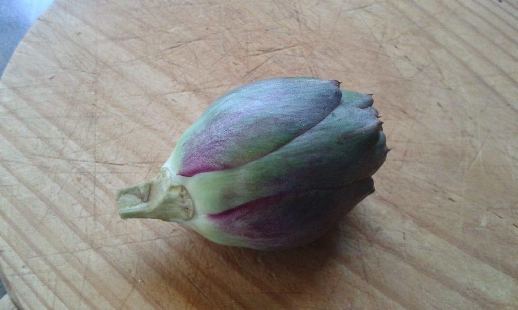 flores de alcachofa receta